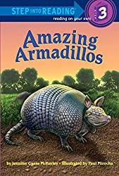 Amazing armadillos Children's Book