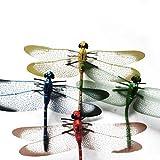 Gankmachine 5pcs 3D Simulación libélulas imán de plástico del refrigerador para el hogar decoración del Coche Color al Azar