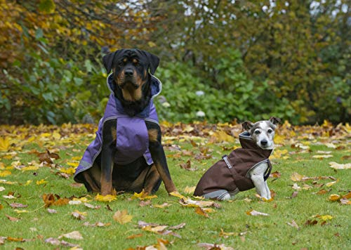Bucas Freedom Dog Rug 300gr 75 brown