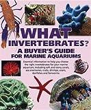 Barrons Books What Invertebrates