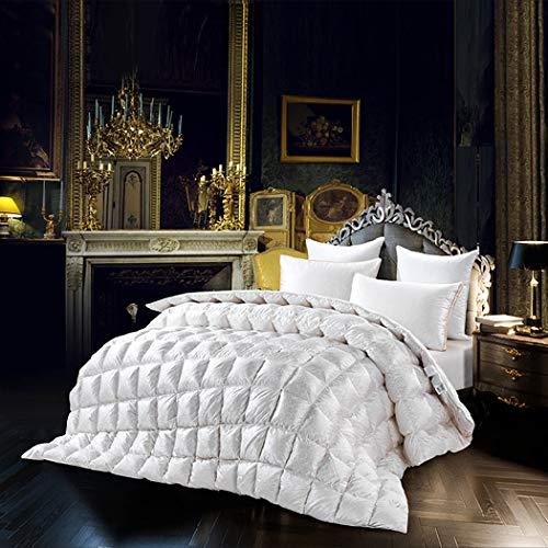 LanPerro Goose Down Quilt, 95% High Grade White Goose Cotton Duvet, Winter Quilt Blanket Filler, Fluffy Medium Warmth, Solid White,220 * 240CM 1.45kg