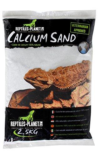 Reptiles Planet Arena de Arena de Calcio terrarios Sand Artic Blanco 2,5kg