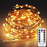 Twinkle Star 33ft 100LED Copper Wire String Lights Fairy String Lights 8 Modes LED String Lights USB Powered with Remote Control for Wedding Party Home Christmas Decoration, Warm White