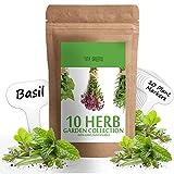 Herb Seeds Vault [10 Variety - 3000 Seeds]- Heirloom Non GMO - Herbs...