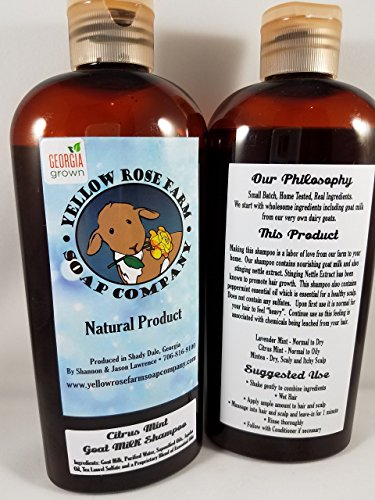 Handcrafted GOAT MILK SHAMPOO- Citrus Mint. All Natural Fresh from the FARM! NO Sulfates, Parabens, or Mineral Oil. Safe for processed hair. Helps with HAIR GROWTH.