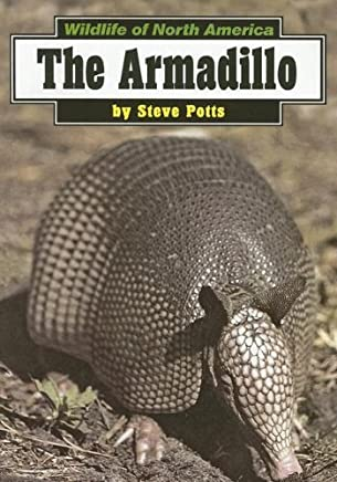 [( The Armadillo )] [by: Steve Potts] [Sep-1999]