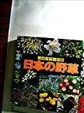 日本の野草 (山渓カラー名鑑)