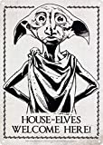 No dream House Elves Welcome Here Eisen Malerei Wand Poster