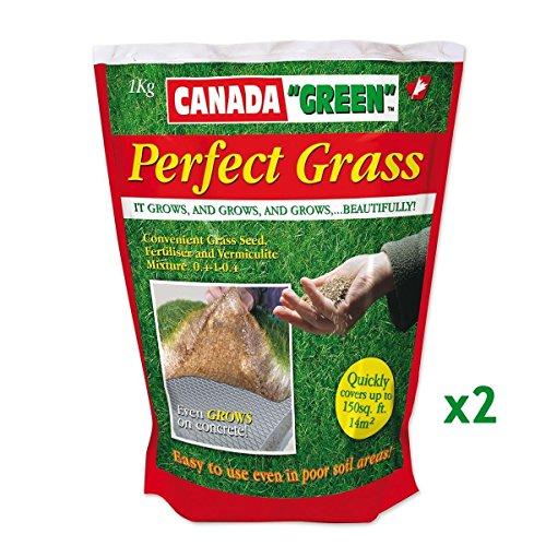 Perfect Grass - Lot de 2x1kg