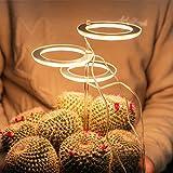 GYAM Luz de Cultivo LED, lámpara de Cultivo Phyto de Espectro Completo, lámpara Phyto USB temporizada, iluminación de Crecimiento de Plantas para Plantas de Interior,Rosado,3 Head