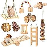 amasawa 10 pezzi giocattoli da masticare per criceti,giocattoli in legno naturale,cavia cincillà giocattoli da masticare,adatto per criceti, conigli e pappagalli per giocare con i giocattoli molari