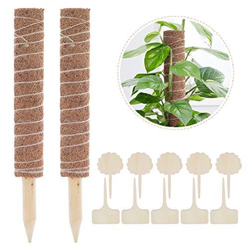 Lemecima 2 Stück Pflanzstab Kokos Rankstab Rankhilfe Blumenstab mit 10 Holzetiketten für Pflanzenname Pflanzzeit Kokosstab Stützpfahl Holz aus Natürlicher Kokosfaser zur Dekoration Verlängerbar