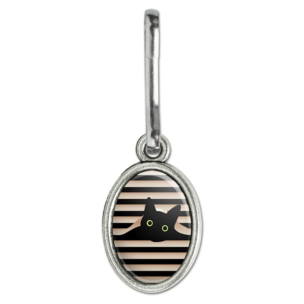 GRAPHICS & MORE Black Cat in Window Antiqued Oval Charm Clothes Purse Suitcase Backpack Zipper Pull Aid