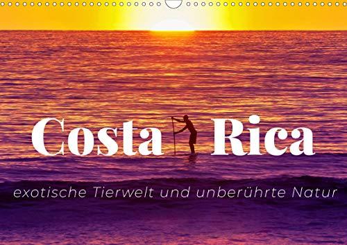 Costa Rica - exotische Tierwelt und unberührte Natur (Wandkalender 2021 DIN A3 quer)