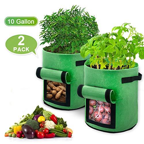 BoloShine 2 Stück Kartoffel Pflanzsack, 10 Gallonen Pflanzen Tasche Garten Gemüse Grow Bag mit Tragegriffen, Atmungsaktiv Vliesstoff Dauerhaft Wachsende Tasche Belüftung Stoff Töpfe (Grün)