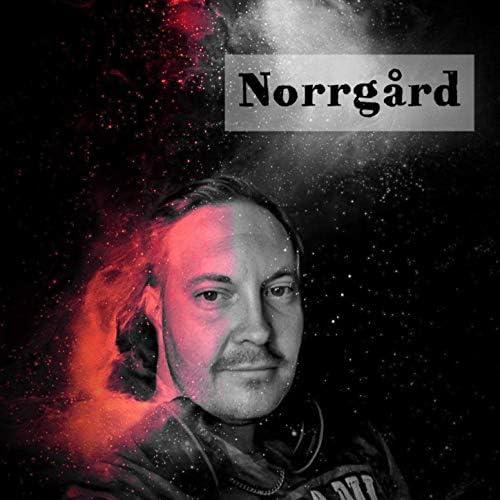 Norrgård