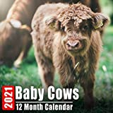 Calendar 2021 Baby Cows: Cute Cow Babies Photos Monthly Mini Calendar With Inspirational Quotes each Month