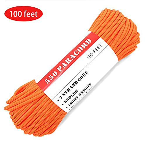 BENGKU Outdoor Mil-SPEC 550lb Paracord/Parachute Cord(MIl-C-5040-H),100Feet (550 Orange, 100.00)