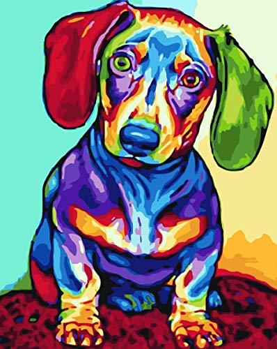 WISKALON Pintura por Números para Adultos - Pintar por Numeros Adultos Niños con Pinceles y Pinturas-16 * 20 Pulgadas, Sin...
