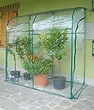Invernadero de jardín de pared de acero con lona de ramas Oleander verde