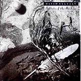 Secrets of the Beehive by David Sylvian (0100-01-01) 【並行輸入品】