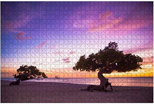 Aruba Beach,color púrpura,puesta de sol,1000 piezas,rompecabezas para adultos,juguete educativo para adultos,niños,gran juego de rompecabezas,juguetes,regalo-PUZZLE3