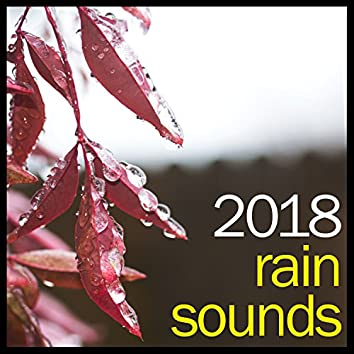 #2018 Spa Music Rain Collection - Thunder and Calming Rain