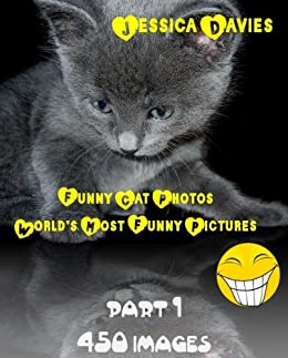 Funny Cat Photos - World's Most Funny Pictures Part: 1