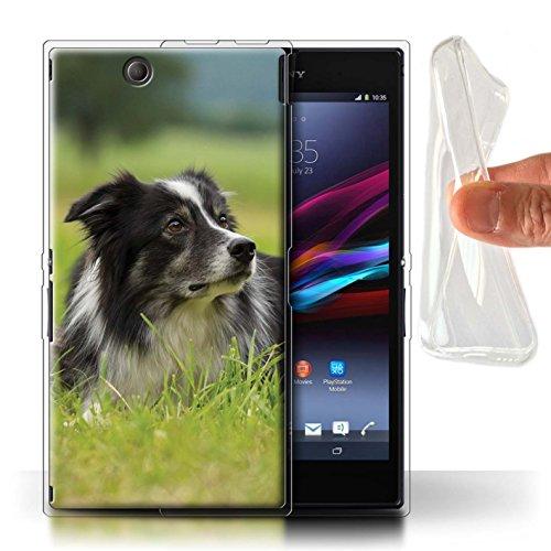Hülle Für Sony Xperia Z Ultra Hund/Eckzahn Rassen Border Collie Design Transparent Dünn Weich Silikon Gel/TPU Schutz Handyhülle Case