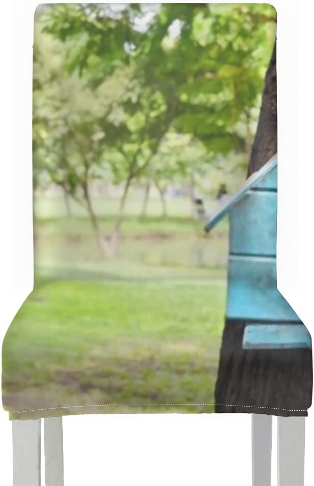Chair Covers for Dining Roo San Jose Mall 2pcs Wood House Bird Blue Stuck Made Ranking TOP2