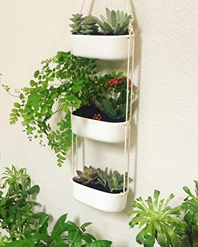 Mkono Ceramic Hanging Planter 3 Tier Indoor Wall Plant Holder for Succulent Herb Air Plant Live or Faux Plants Modern Vertical Garden , Rectangular 3 The 3-tier hanging planter is a functional and chic planter. It's a good way to let your creativity go wild, displaying the succulent, cactus, herb, air plant, ferns, orchids and other small plants with colorful pebbles, sea shell. NO plant included in this item! The ceramic wall hanging planter combine modern design and farmhouse statement that breathe life into your home, apartments, condo units, offices, living rooms, bedrooms, balcony, patios, garden, yard, even weddings, parties and more without taking too much space. The rectangle succulent pots are made of good quality white ceramic and adjustable cotton rope. Each ceramic hanging pot has draining hole in the bottom that prevent stagnant water and help you prolong the life of your precious plants.