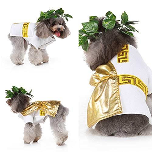 XMCWZJ Halloween grappige kat huisdier kostuum dog dog kostuum cosplay wonder woman kostuum mantel capo accessoires hond