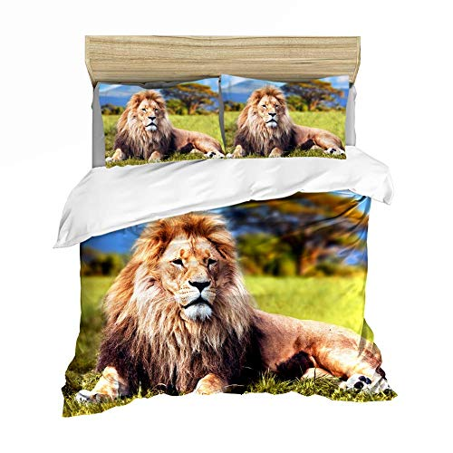 221 3D African Savannah Lion Bed Set with Zip 3 Pieces Duvet Cover with Pillow Case Suitable for Young Boys Spring Summer Autumn Winter, Lion 2, 200x200CM