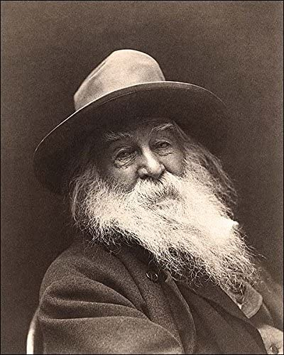 Writer Poet Walt Whitman Portrait Photo Silver Halide 8x10 New products world's highest quality popular 1887 Oakland Mall