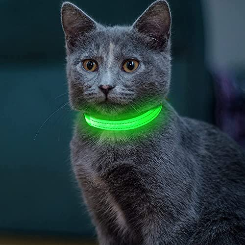YFbrite LED Cat Collar, Light Up Dog Collars for Small Dogs, USB Rechargeable...
