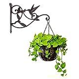 Hanging Plant Hook Hummingbird Cast Iron Decorative Flower Basket Two-Sided Wall Hanging Hooks Bracket Hanger for Indoor Outdoor Plants Bird Feeder Lantern Planters Flower Pots Wind Chimes