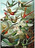 カウントクロスステッチキットヒートハミングバードDIY11CT刺繡工芸品スターターキット用マルチカラー針先パターン室内装飾(プレスタンプキット)40×50cm