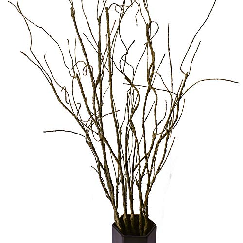 FeiLix 5PCS Artificial Curly Willow Branches, Decorative Dry Twigs, 30.7 Inches Fake Bendable Sticks Vintage Vines Stems DIY Craft Vases Artificial Flowers Garden Hotel Office Home Farmhouse Decor