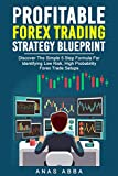Profitable Forex Trading Strategy Blueprint (With Live Trade Examples Bonus Videos): Discover How To Identify Low Risk, High Probability Forex Trade Setups Like A Pro Trader! (English Edition)