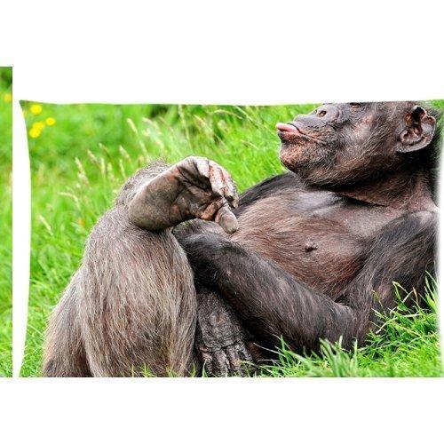 Funny Cute Chimpanzé allongé sur le sol Housse d'oreiller zippée 50,8 x 76,2 cm