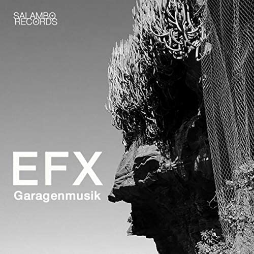Efx & Ampli Fire