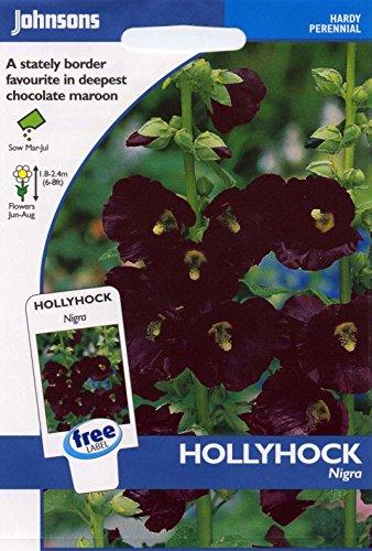 johnsons seeds - Pictorial Pack - Fiore - Malva Nigra - 50 Semi