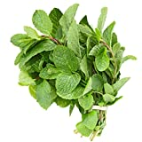 Fresh Mint Leaves (7 oz.)