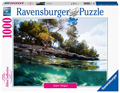Puzzle 1000 Piezas Foto & Paisajes (16198)