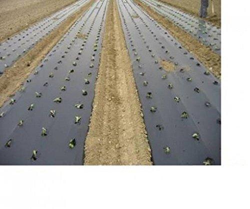 Filnova Biotelo per pacciamatura 1mt x 100mt 15 Micron biodegradabile