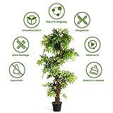 COSTWAY Zimmerpflanze Deko, Kunstpflanze grün, Dekopflanze künstlich, Kunstbaum Pflanzendekoration Innendekoration für Zuhause Garten Büro (160x19x19cm) - 4