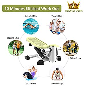 leikefitness Premium Portable Climber Stair Stepper & Waist Fitness Twister Step Machine with LCD Monitor ST6600-2(Green)
