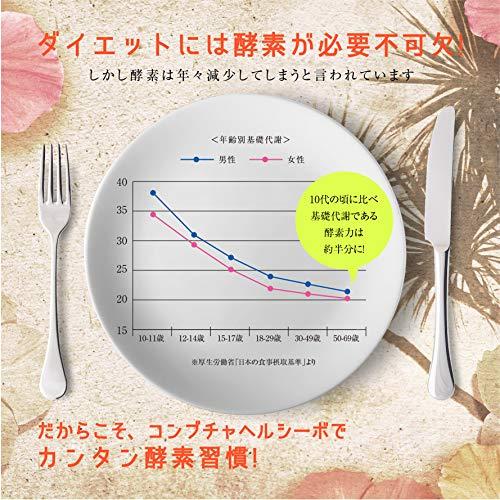 コンブチャヘルシーボダイエット酵素ドリンク酵素生酵素置き換えダイエットファスティング国産原料使用マンゴー味720ml