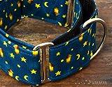 Collar Martingale Para Perro: Starry Night, Hecho a Mano en España por Wakakán