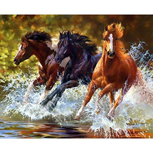 MOL Driepaard met water en 5D Diamond Painting 40x50cm/16x20in